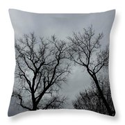 Bare, Raw, Cold Winter Day  Throw Pillow
