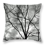 Bare Til Spring Throw Pillow
