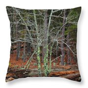 Bare Tree And Boulders In Mark Twain Forest Throw Pillow