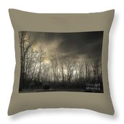 Bare Trees In A Winter Sunset Throw Pillow