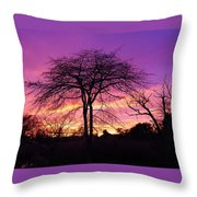 Bare Trees In Gorgeous Sunset Throw Pillow