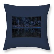 Bare Trees Reflected Throw Pillow
