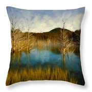 Bare Waters Throw Pillow