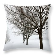 Bare Winter Trees Throw Pillow