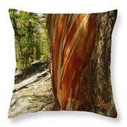 Bare Wood Throw Pillow