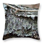 Bark - Lichen - Cat Brier Tendrils Throw Pillow