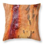 Bark Kc05 Throw Pillow