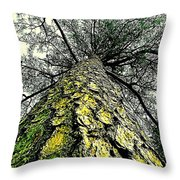 Bark Up The Tall Pine Tree Abstract In Felicina  Louisiana Throw Pillow