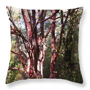 Barking Delight Throw Pillow