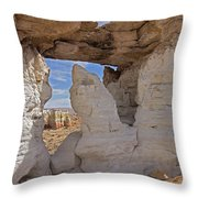 Barking Seal Window-v Throw Pillow
