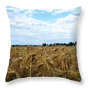 Barley And Sky In Oulu, Finland. Throw Pillow