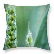 Barley - Impressionism Throw Pillow
