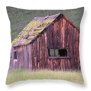 Barm Throw Pillow