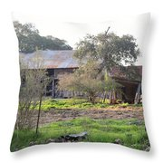Barn 022 Throw Pillow