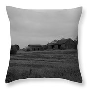 Barn 14 Throw Pillow