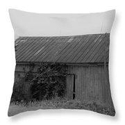 Barn 15 Throw Pillow