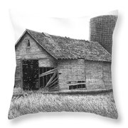 Barn 19 Throw Pillow