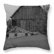 Barn 19 Throw Pillow
