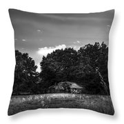 Barn And Palmetto-bw Throw Pillow