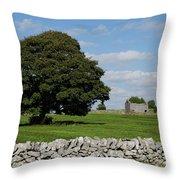 Barn And Tree Throw Pillow