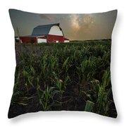 Barn Astronomy 2  Throw Pillow