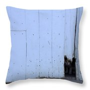 Barn Cat Hello Throw Pillow