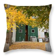 Barn Doors Throw Pillow