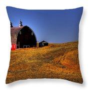 Barn II Throw Pillow