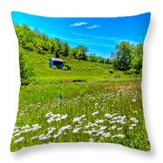 Barn In A Field Throw Pillow