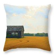 Barn In A Field  Throw Pillow