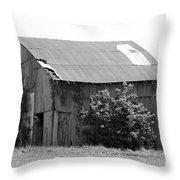 Barn In Kentucky No 58 Throw Pillow