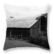 Barn In Kentucky No 86 Throw Pillow