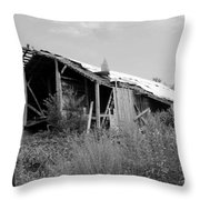 Barn In Kentucky No 87 Throw Pillow