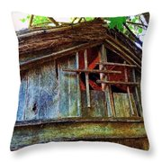 Barn In Summer Colors Throw Pillow