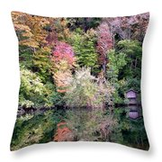 Barn In The Mirror Throw Pillow