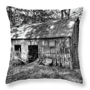 Barn In The Ozarks B Throw Pillow