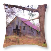 Barn In The Valley Throw Pillow