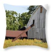 Barn Lot Throw Pillow