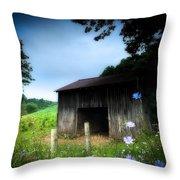 Barn N Flowers Throw Pillow