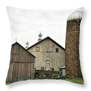 Barn On The Georgia Shore Road Throw Pillow