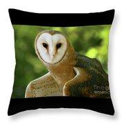Barn Owl-6553 Throw Pillow