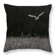 Barn Owl Hunting At Dusk Throw Pillow