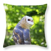 Barn Owl Looking Skyward Throw Pillow