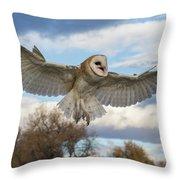 Barn Owl Makes A Happy Landing Throw Pillow