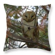 Barn Owl Sleeping Throw Pillow