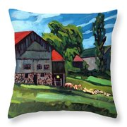 Barn Roofs Throw Pillow
