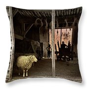 Barn Stock Throw Pillow