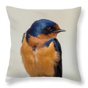 Barn Swallow Perched On A Fence Watching Throw Pillow