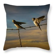 Barn Swallows On Barbwire Fence Throw Pillow