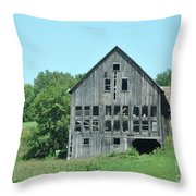 Barn With Chickens In Window Throw Pillow